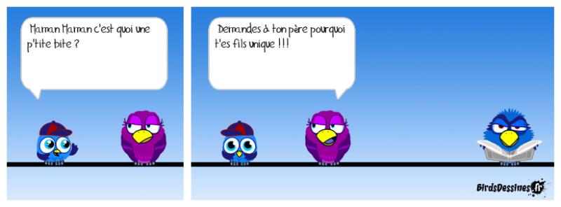 Les Birds - Page 3 Jcf68_10