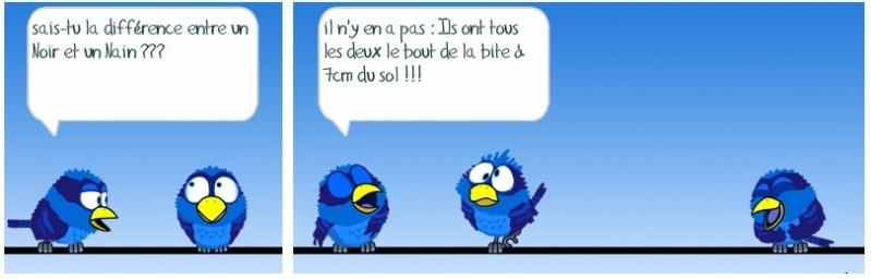 Les Birds - Page 3 Ob_5ae10