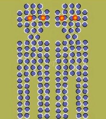 Illusions d'optique - Page 24 Ob_e6e10