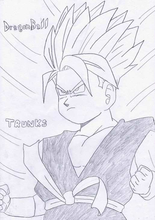 Motta's Gallery - Page 15 Trunks10