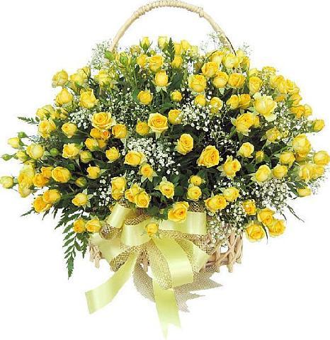 Slike vašeg omiljenog cveća 15649611