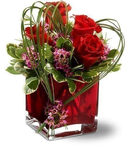 Slike vašeg omiljenog cveća 15652410
