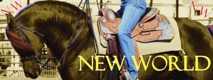 New World New-wo11