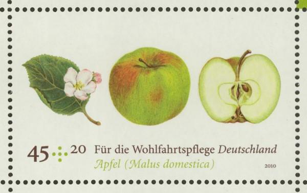 Ausgaben 2010 Deutschland Marke_13
