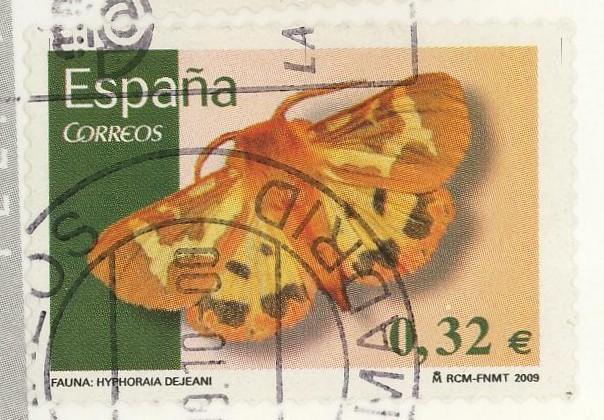 Schmetterlinge - Seite 2 Spanie13