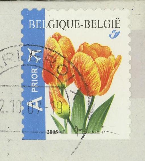 Tulpen Tulpen10