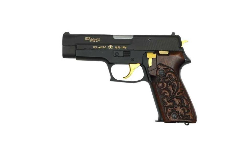 SIG P75 (P220) 45021710