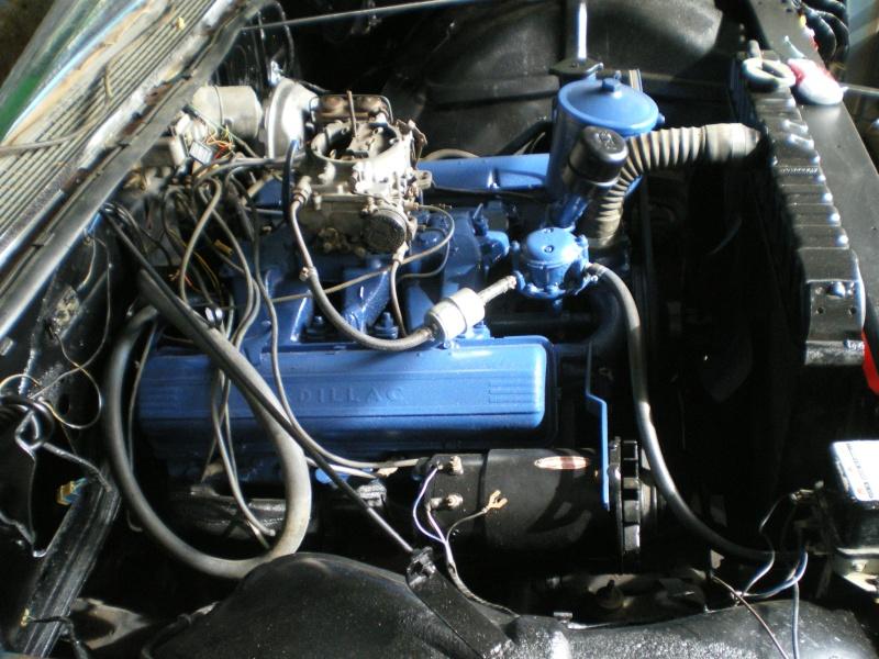 Superior Cadillac 1959 ,ecto 1 - Page 2 Imgp3820