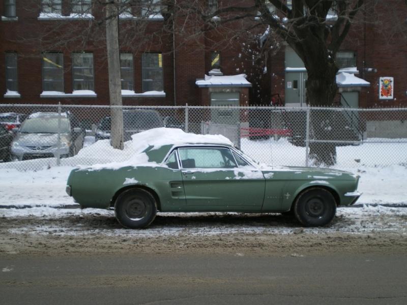 Hiver 2010, une Mustang 1967 dans la neige à Montréal ! Imgp4810