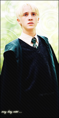 Draco. Malfoy.