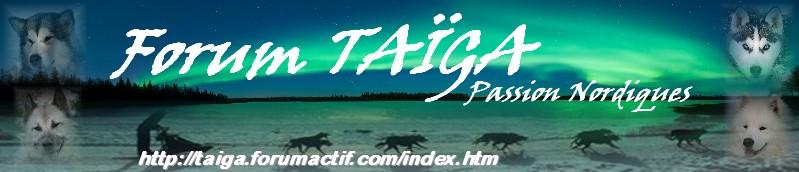 nouvelle déco pour Taiga - Page 5 Bannia16