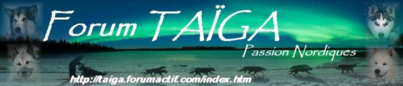 nouvelle déco pour Taiga - Page 5 Bannia17