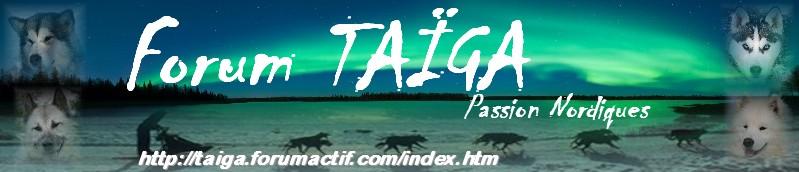nouvelle déco pour Taiga - Page 5 Bannia18