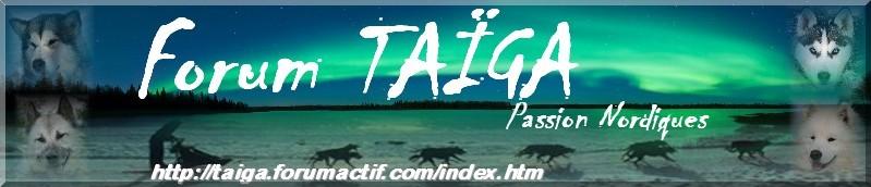 nouvelle déco pour Taiga - Page 5 Bannia19