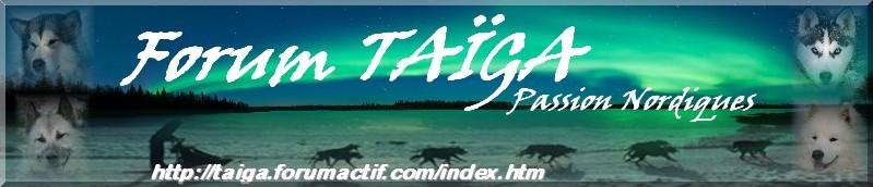 nouvelle déco pour Taiga - Page 5 Bannia20