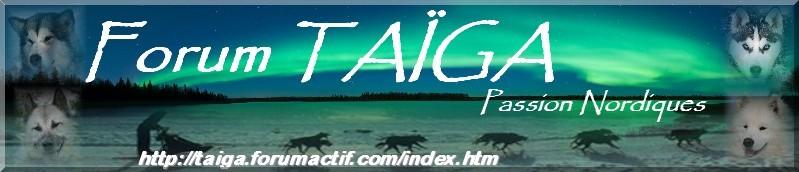 nouvelle déco pour Taiga - Page 5 Bannia21