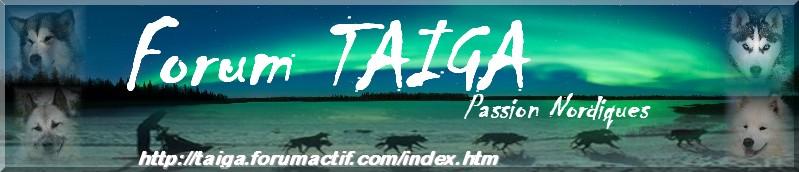 nouvelle déco pour Taiga - Page 5 Bannia22
