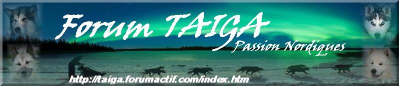 nouvelle déco pour Taiga - Page 5 Bannia23