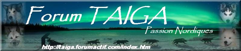 nouvelle déco pour Taiga - Page 5 Bannia24