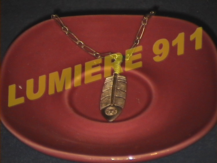 COLLECTION LUMIERE911 Plume10
