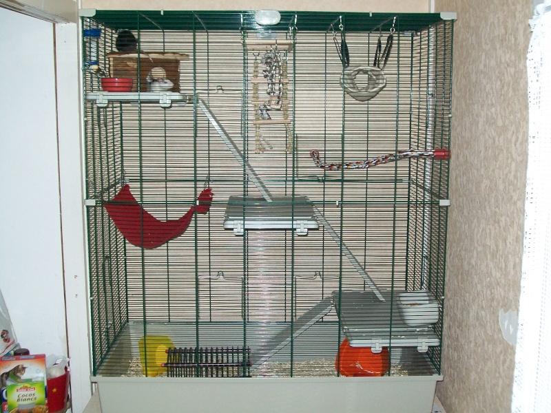 La cage SAMO - Page 2 101_0110