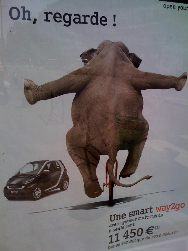 Eléphants - The Last Mahout Photo17