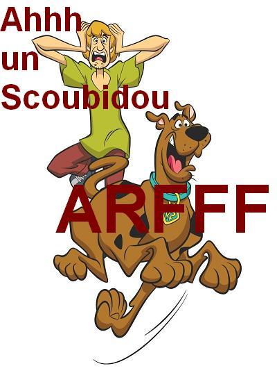 Bonjour a tous je me presente Scoubi10