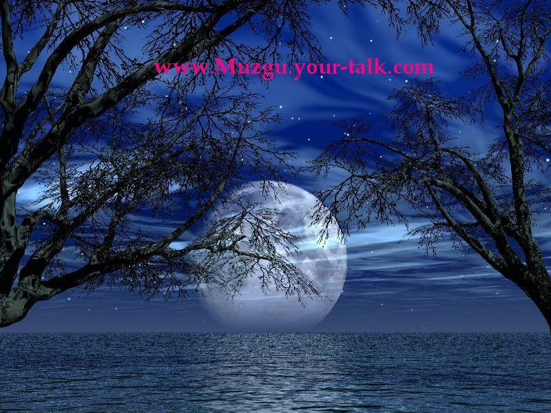 www.Muzgu.your-talk.com