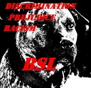 T-shirts Bsl410