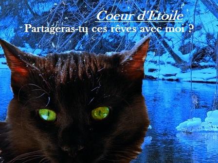 †. Clarus Chat_p11