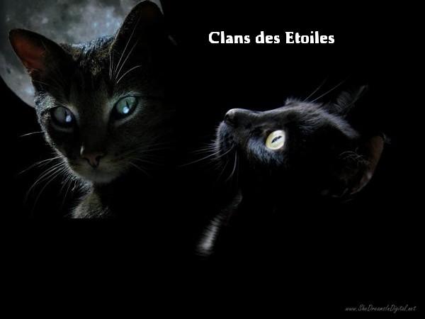 †. Clarus Fond-e10
