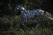 ANFÄNGER: Mosaikefekt Mosaik10