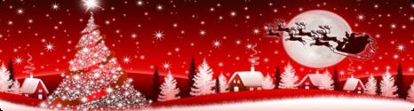 Joyeux Noël avec BFN 12932410