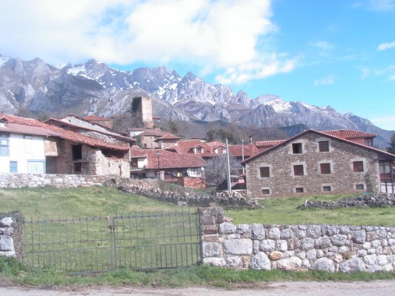 Bajo los Picos (31-3-10) P3310021