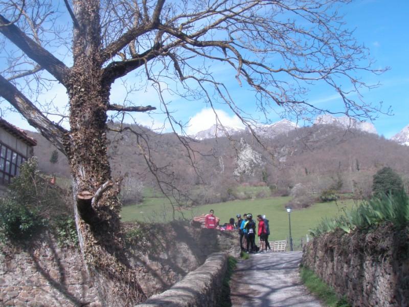Bajo los Picos (31-3-10) P3310025