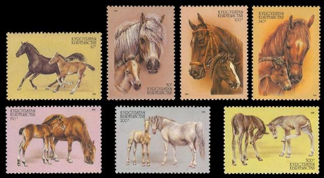 Pferde - Seite 2 Kirgiz10