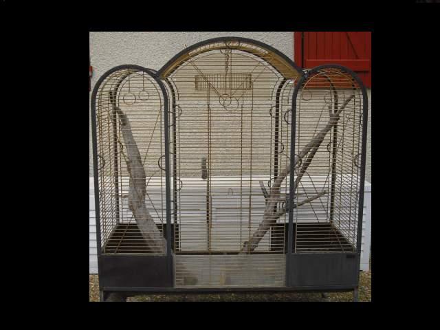 Que pensez vous de cette cage? 32237810
