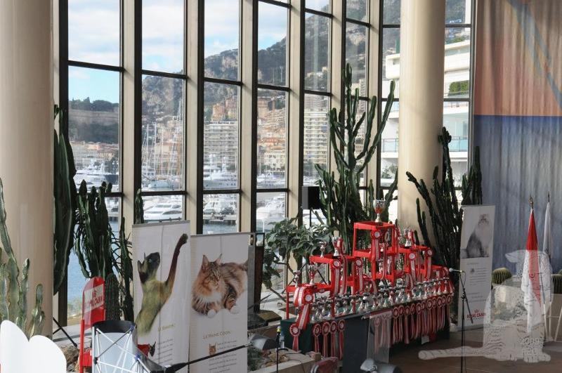 Monaco 2010 Img_ds10