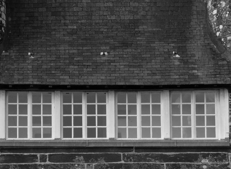 Dimanche 5 Décembre - Noir et Blanc - Page 2 Noir_e10