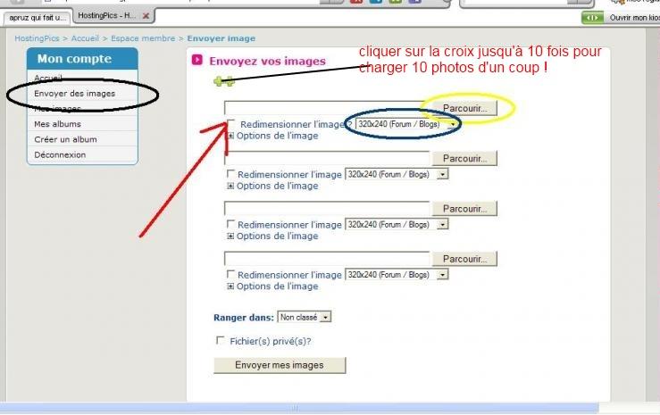 TUTO :  Comment poster des photos sur le forum avec Hostingpics.net Hostin10