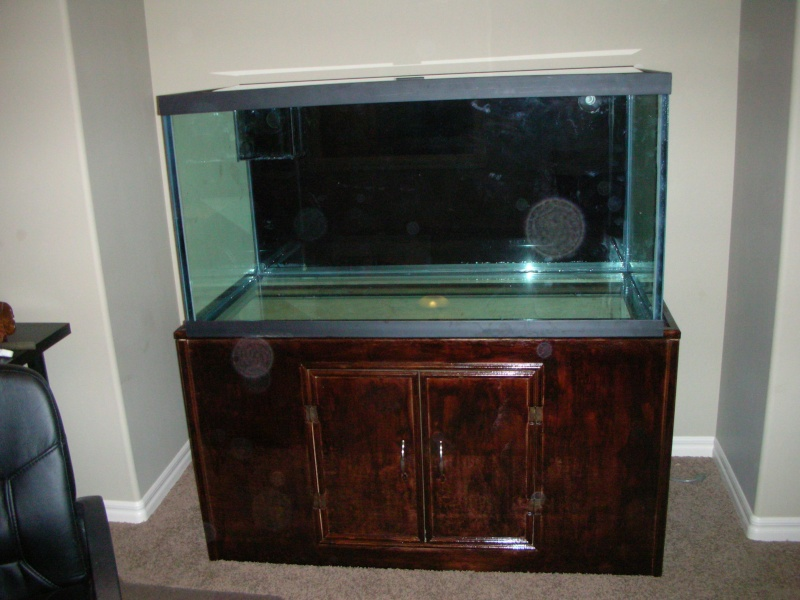 Derek's 90 gal. reef build New_ta12