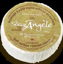 Avez-vous un fromage à nous suggérer ? 21122510