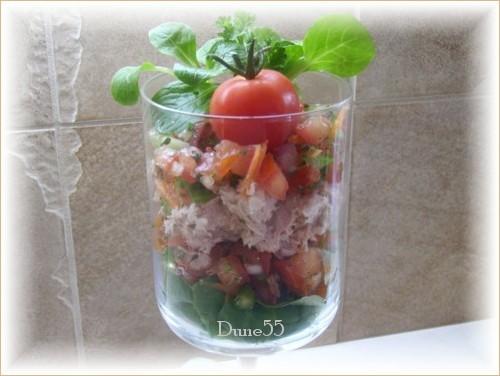 Salade de concassé de tomates au thon Salade10