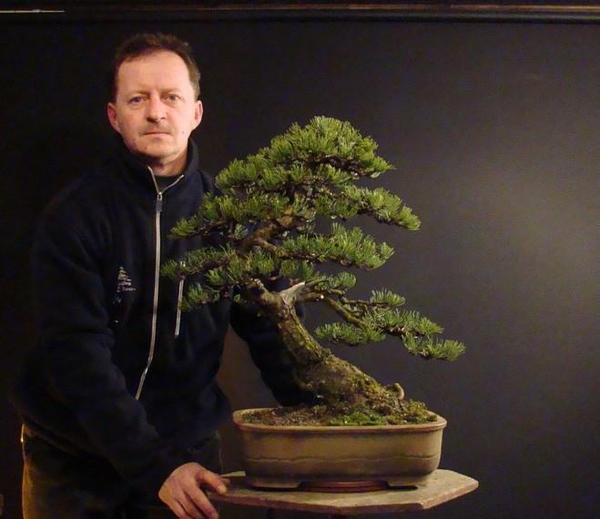Pinus mugo 2004 Ib_712