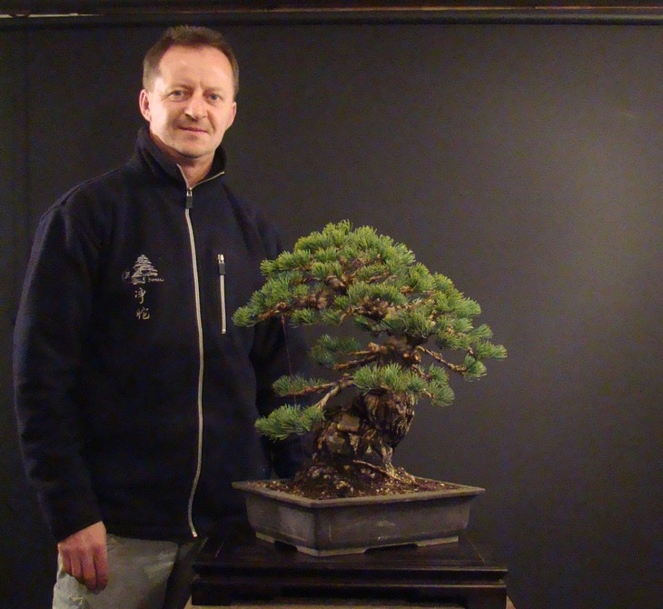 Pinus parviflora (owner my client) - restyling  2011 Parv_910