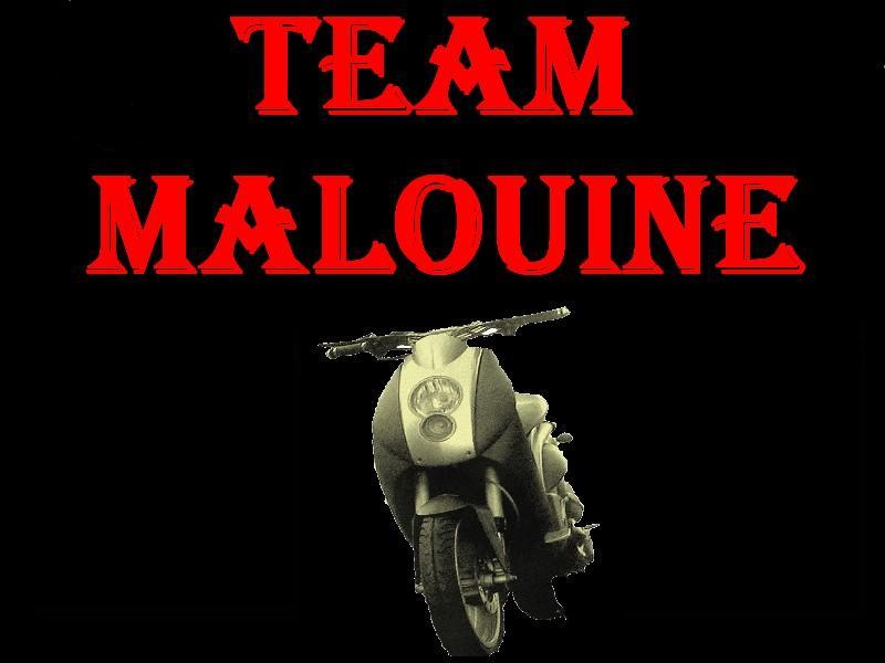 Team-Malouine