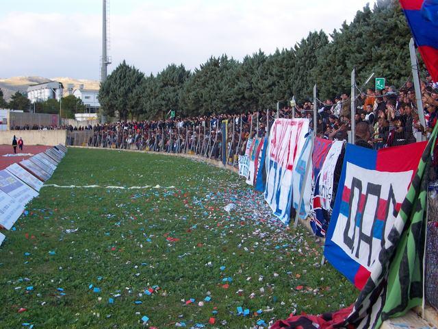 Avola Real_a12