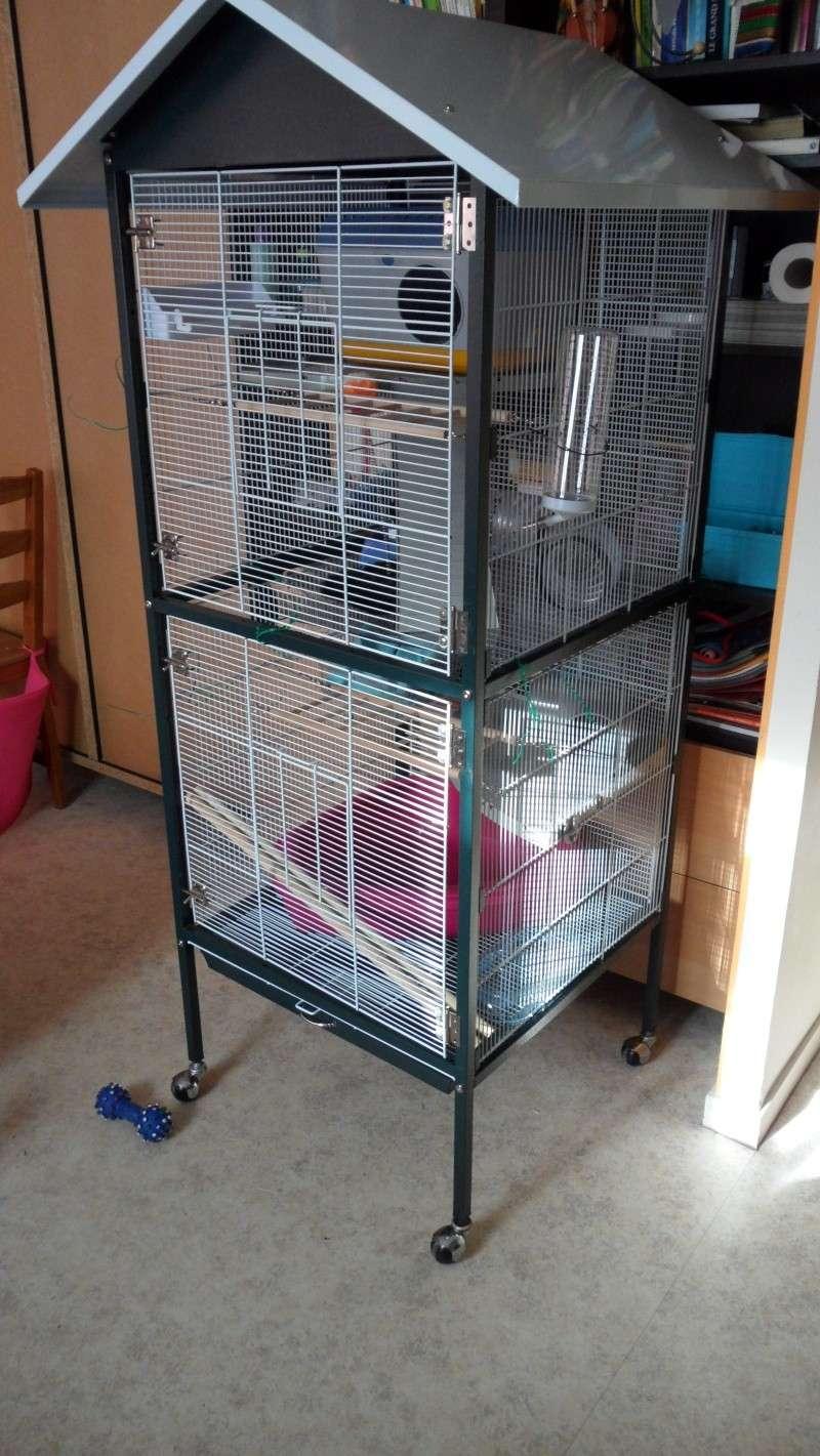 [Vends] [RP-78] Grande volière/cage aménagée pour ratoux Sam_0215