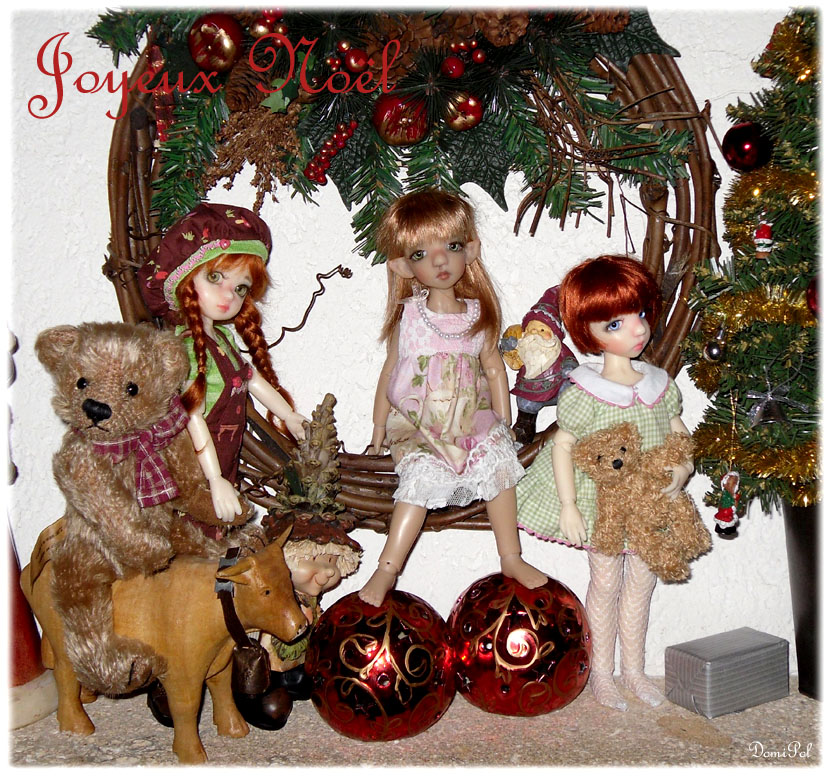 Millie, Cinnamon, Tillie, Lillie, Sage et Nutmeg, de DomiPol  0113