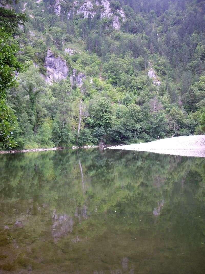 Gorges du Tarn - Lozère Imgp4910